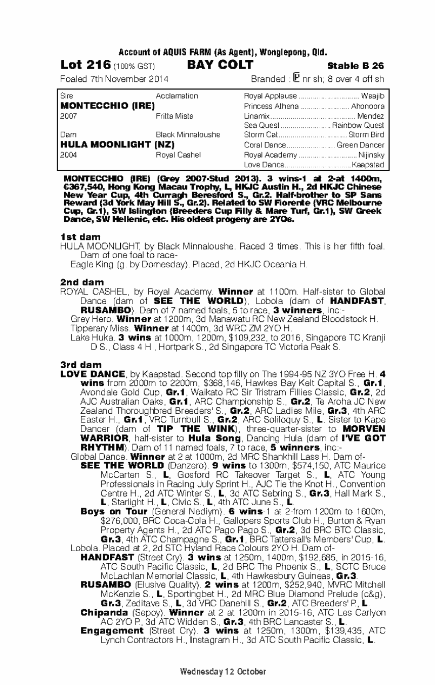 Montecchio (IRE) / Hula Moonlight (NZ) - pedigree