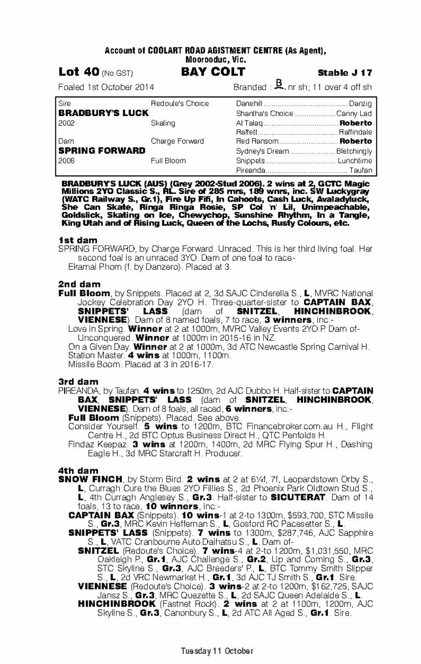 Bradbury's Luck (AUS) / Spring Forward (AUS) - pedigree