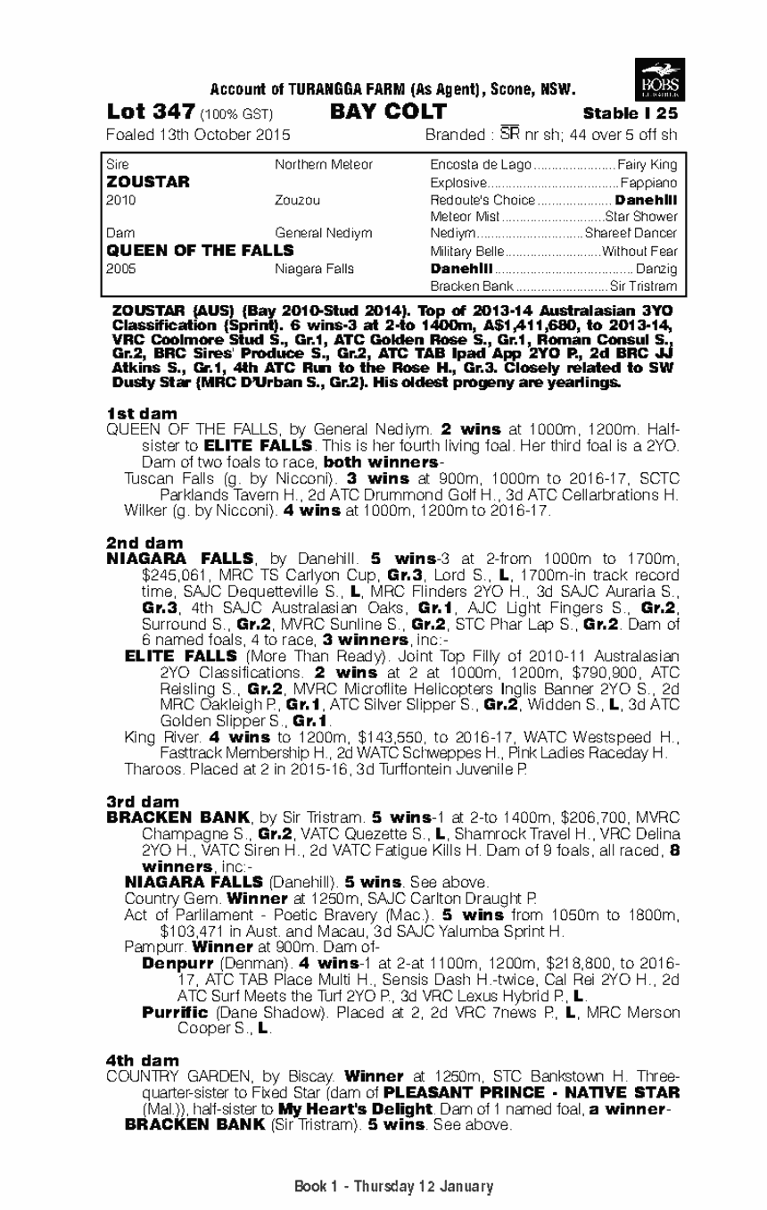 Zoustar (AUS) / Queen Of The Falls (AUS) - pedigree