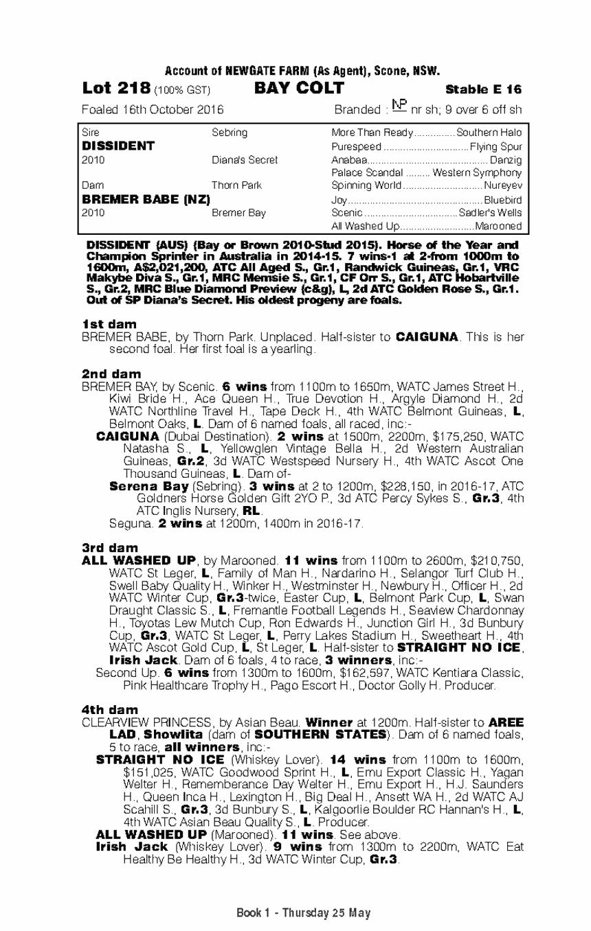 Dissident (AUS) / Bremer Babe (NZ) - pedigree
