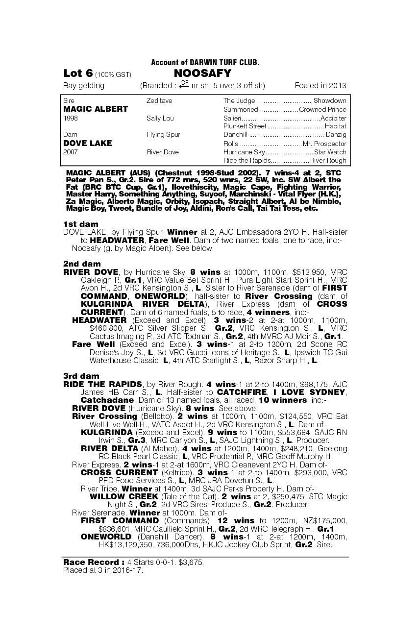 Noosafy (AUS) - pedigree