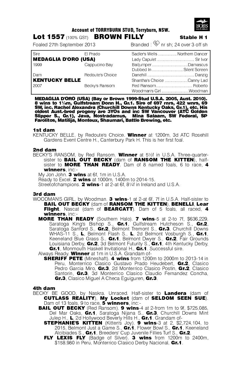 Medaglia D'oro (USA) / Kentucky Belle (AUS) - pedigree