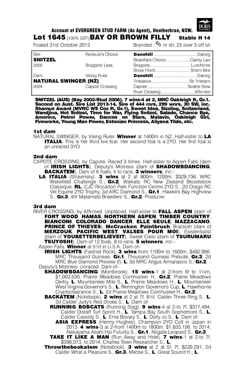 Snitzel (AUS) / Natural Swinger (NZ) - pedigree