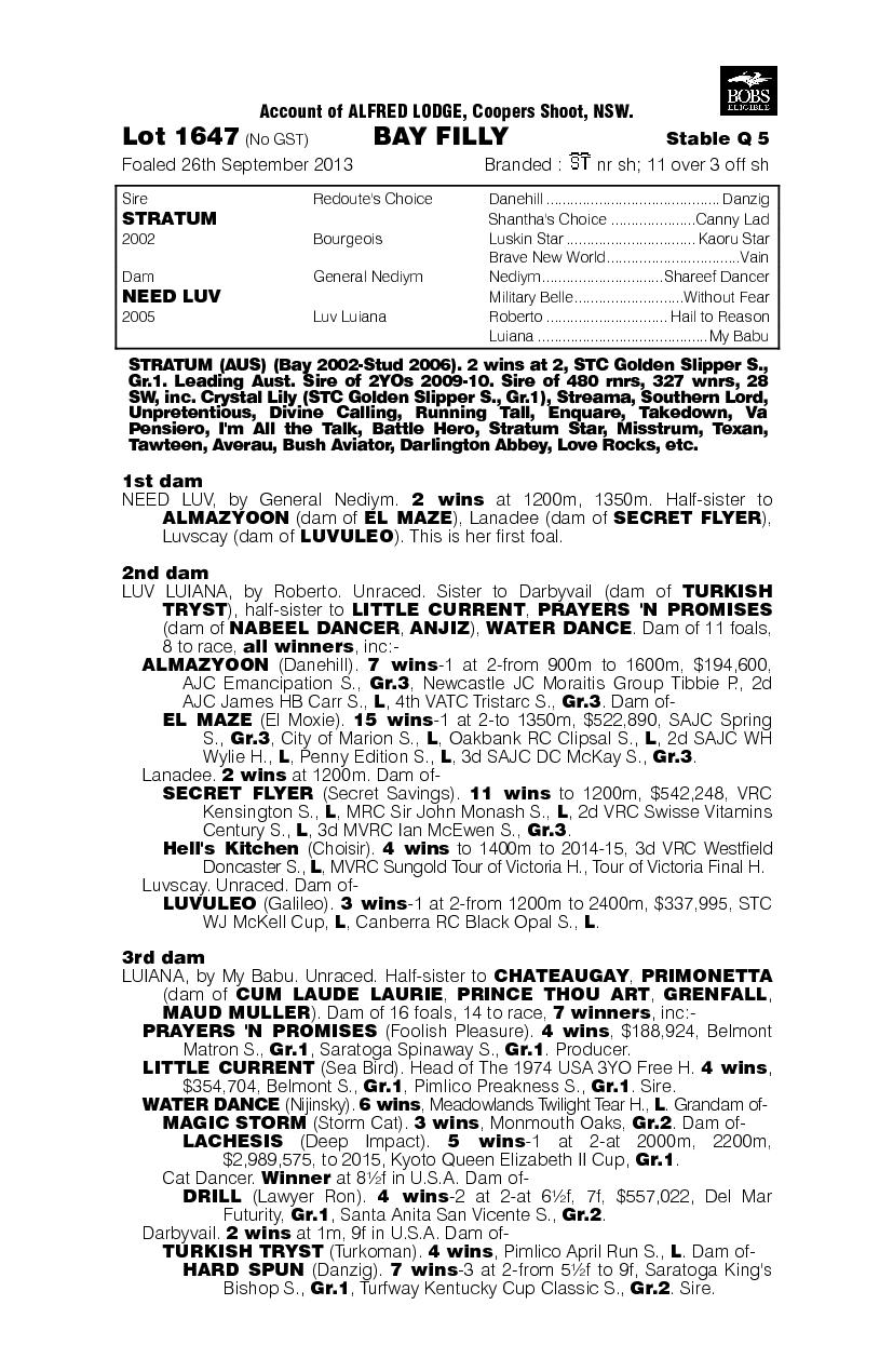 Stratum (AUS) / Need Luv (AUS) - pedigree