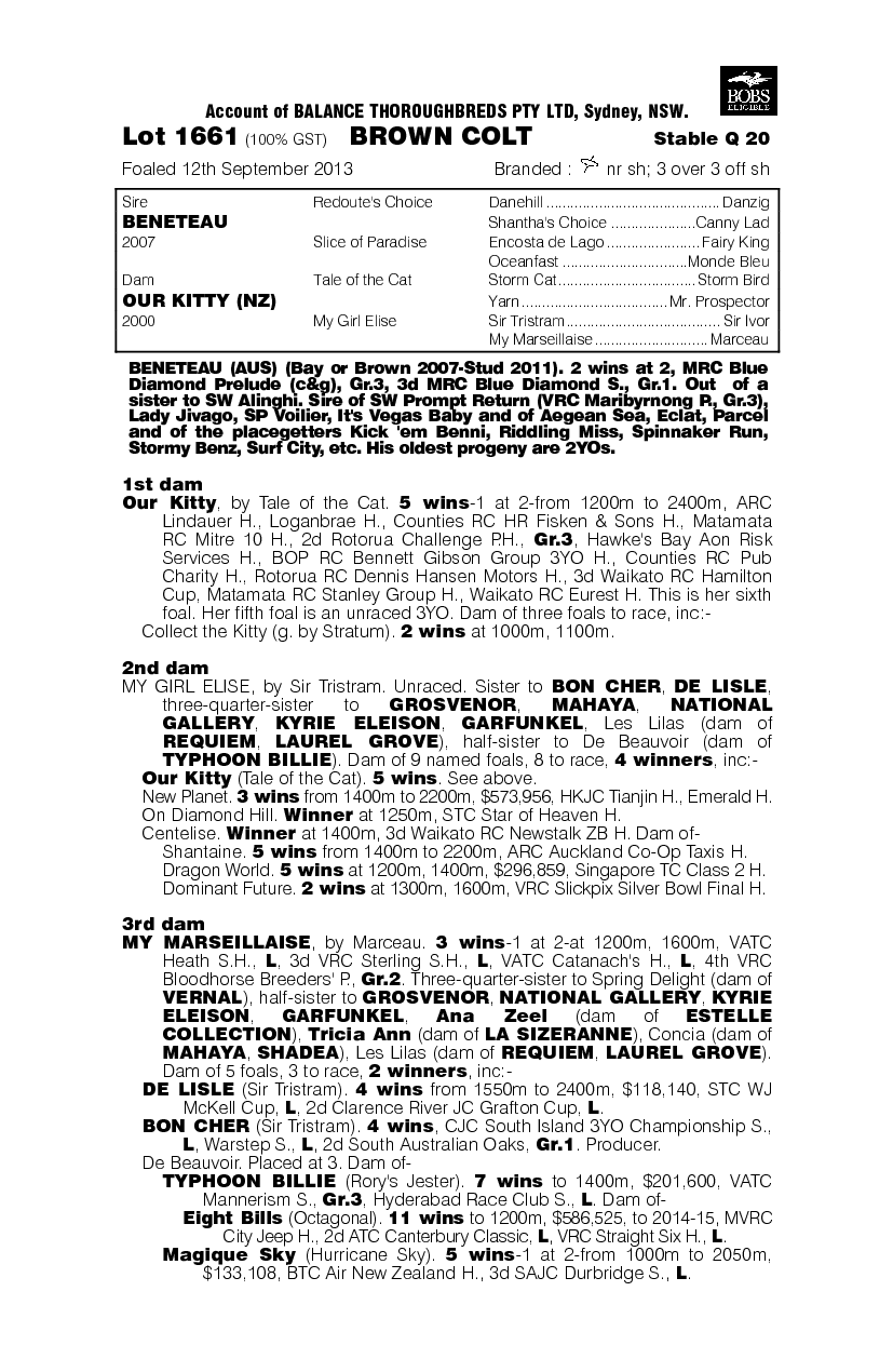 Beneteau (AUS) / Our Kitty (NZ) - pedigree