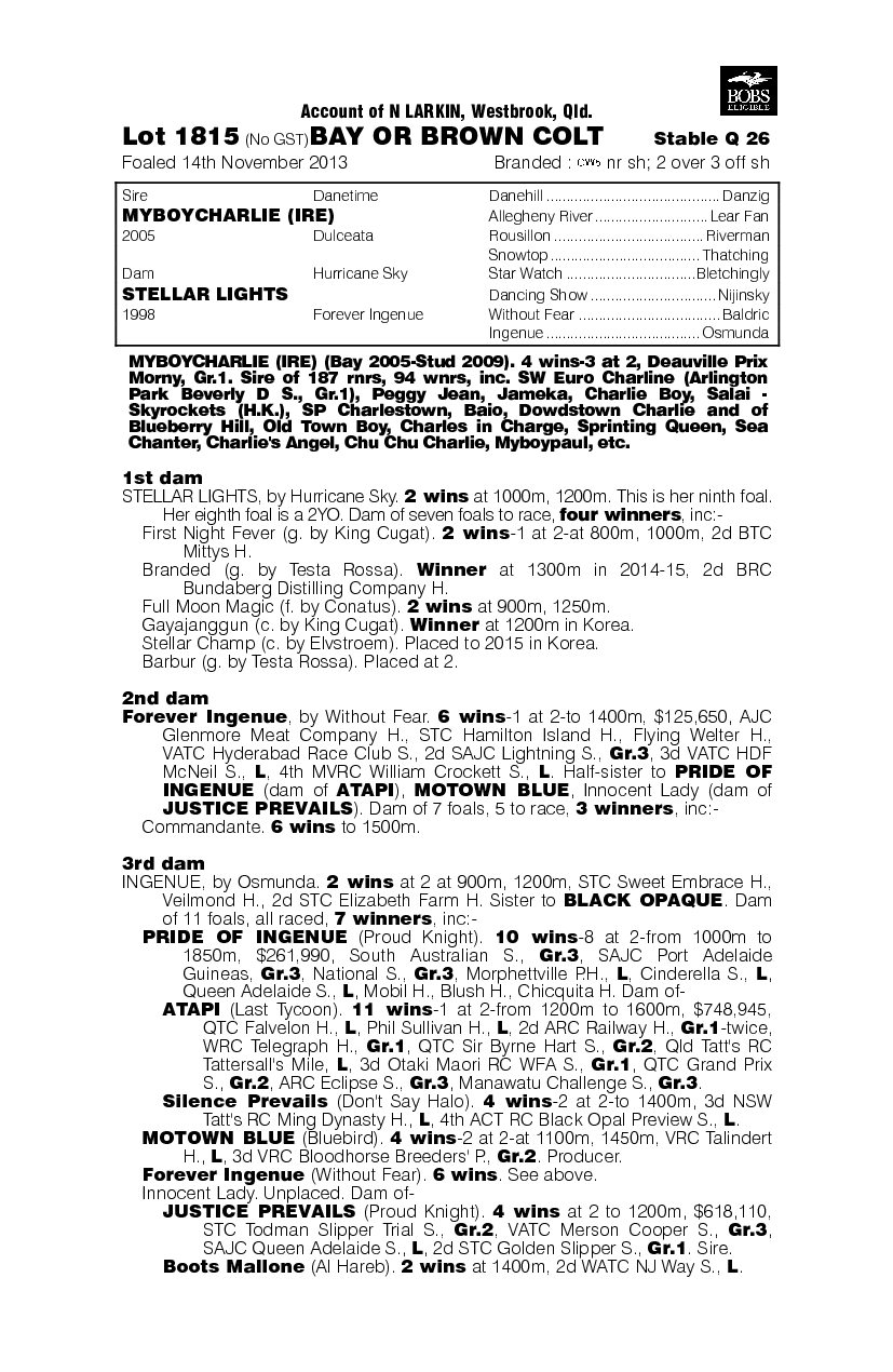 Myboycharlie (IRE) / Stellar Lights (AUS) - pedigree
