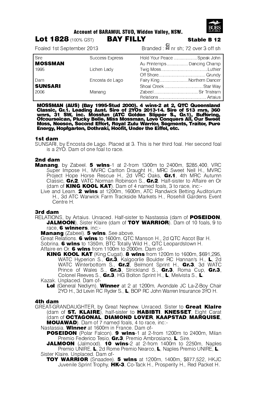 Misinterpretation (AUS) - pedigree