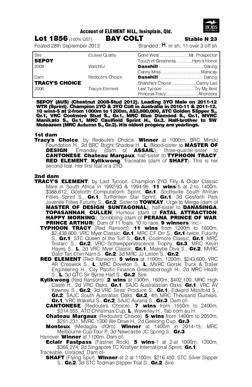 Sepoy (AUS) / Tracy's Choice (AUS) - pedigree
