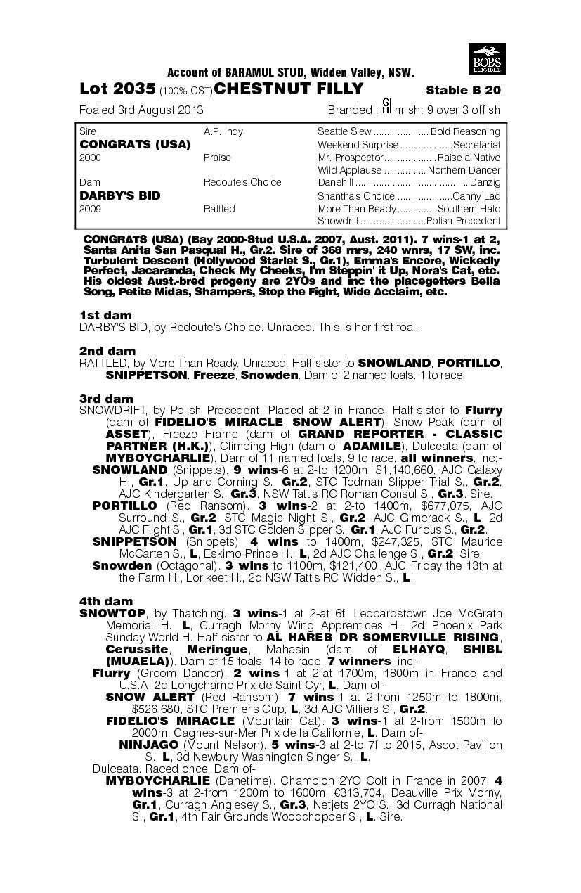 Congrats (USA) / Darby's Bid (AUS) - pedigree