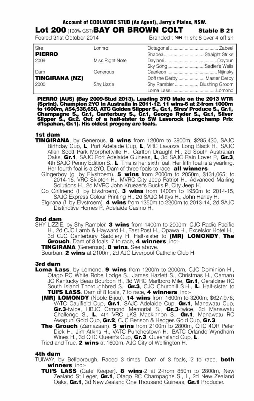Pierro (AUS) / Tingirana (NZ) - pedigree