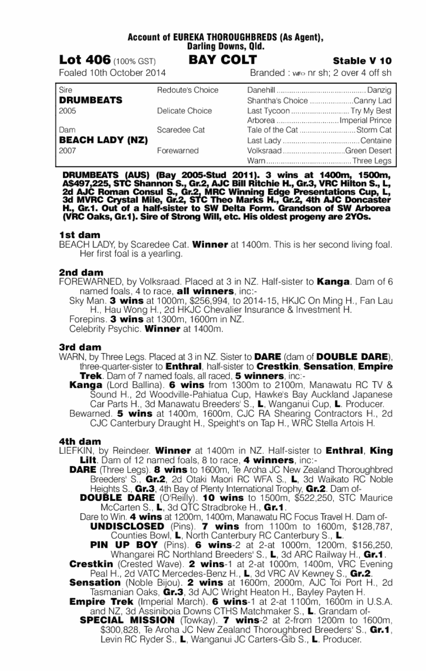 Drumbeats (AUS) / Beach Lady (NZ) - pedigree