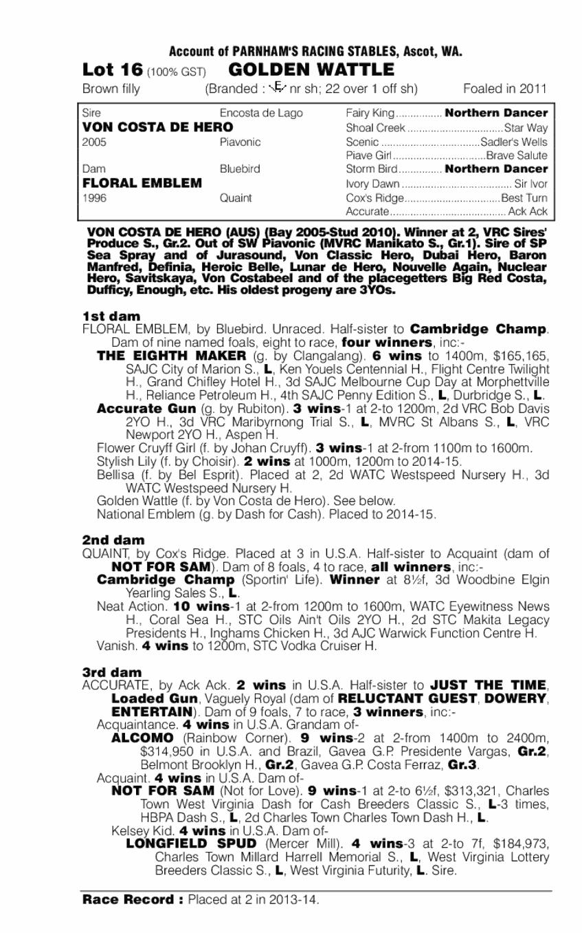 Golden Wattle (AUS) - pedigree