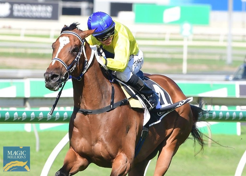 Cup day 3.jpg - Image 1