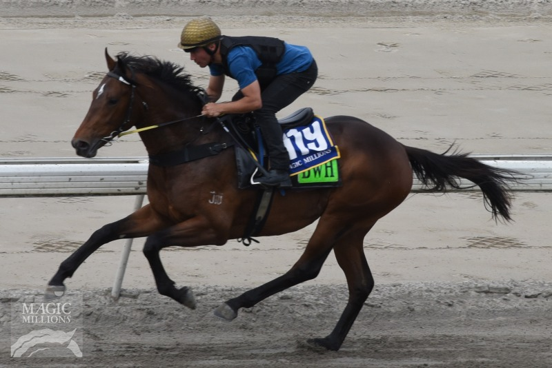 Bullet Train (GB) / Best of You (AUS) - photo 1